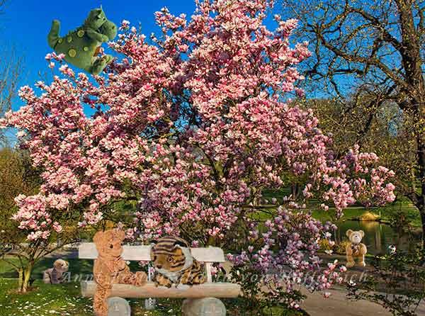 Der Frühling erwacht