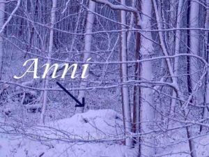 Anni im Schnee