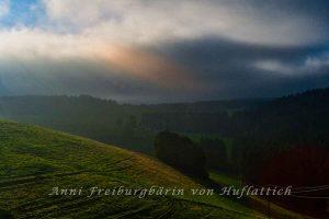 Herrlicher Sonnenaufgang im Schwarzwald
