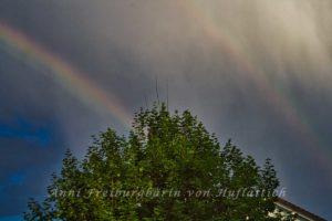 Regenbogen über Sommerrain