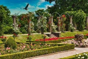 Rosengarten im Rosensteinpark