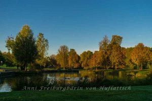 Rosensteinpark im Gegenlicht