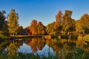 Guten Morgen Rosensteinpark