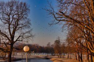 Rosensteinpark im Abendlicht