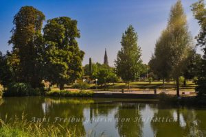 Der Rosensteinpark in hellem Sommerlicht