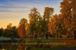 Rosensteinpark im herbstlichen Morgenlicht