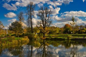 Wunderbarer Herbsttag im Rosensteinpark