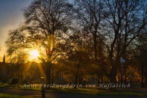 Leitpfosten im Rosensteinpark