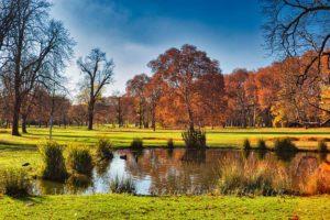 Der Rosensteinpark im hellen Novemberlicht