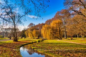Rosensteinpark im Dezember