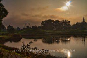 Rosensteinpark im Nebel