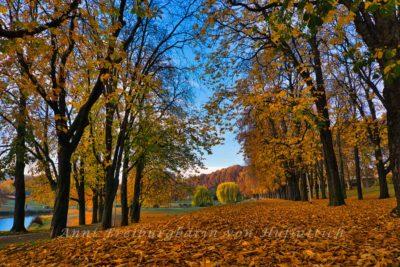 Rosensteinpark im Herbst