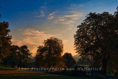 Rosensteinpark im November
