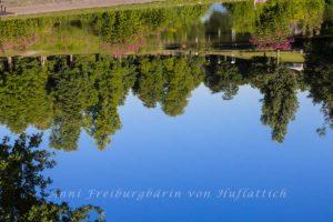 Magischer Morgen im Rosensteinpark