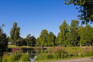 Der unmaggische Rosensteinparksee