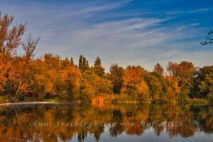 Güldener Herbst in Norddeutschland