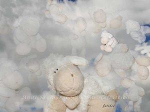 Schafsweiß ist schön